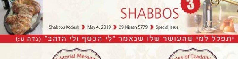 Mesila Shabbos header 3